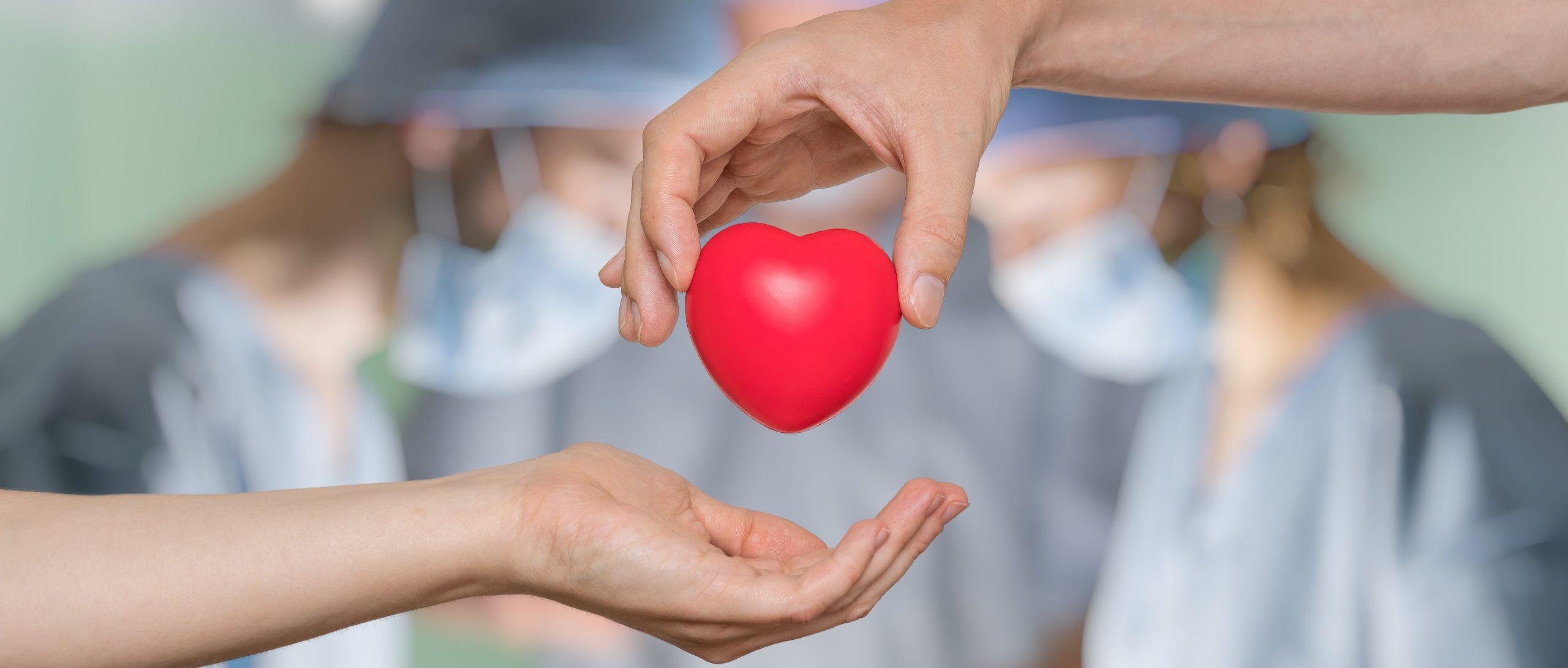 Organ Donation in Malta and Gozo
