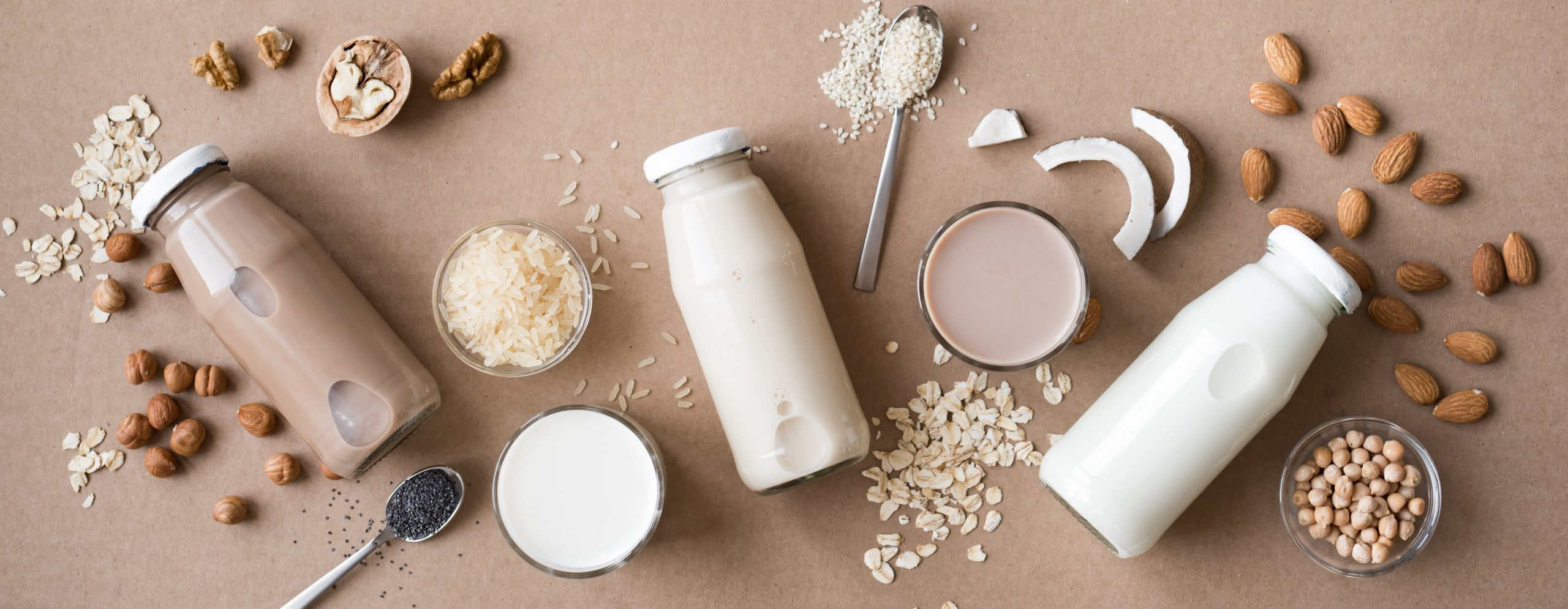 Milk Alternatives for Animal Milk